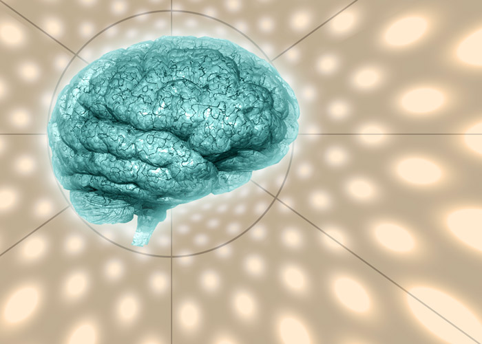 illustration of human brain on beige background - brain